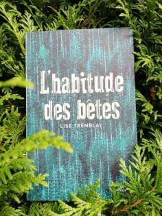 Domi_C_Lire_l_habitude_des_betes_lise_tremblay_delcourt